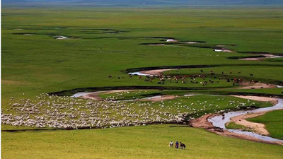 在西乌旗大草原上拜访沿途一至两个牧场