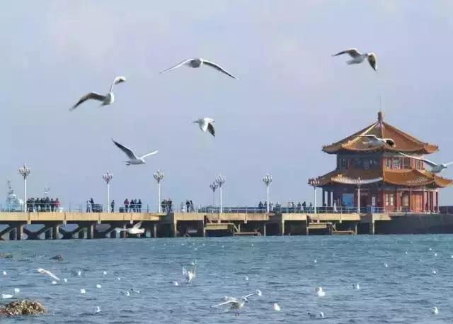 28.山东:青岛栈桥